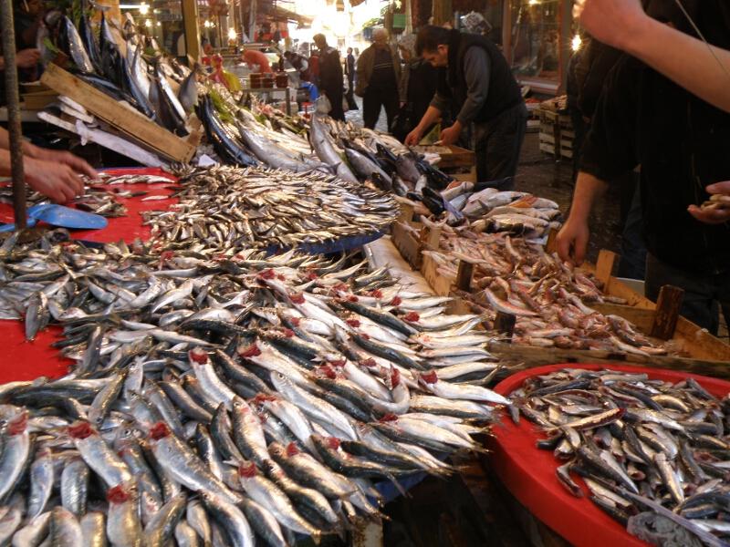 Frauen Segeln: Fischmarkt