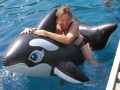 Frauen Segeln: Schwimmen mit einem Orka